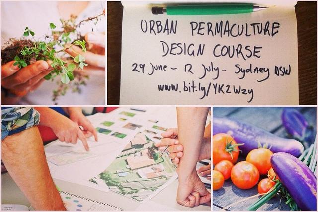 permaculturedesigncourse